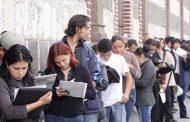Casi el 25 por ciento de los jóvenes carece de trabajo