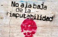 """""""Bajar la edad de imputabilidad no contribuye nunca a la paz social"""""""