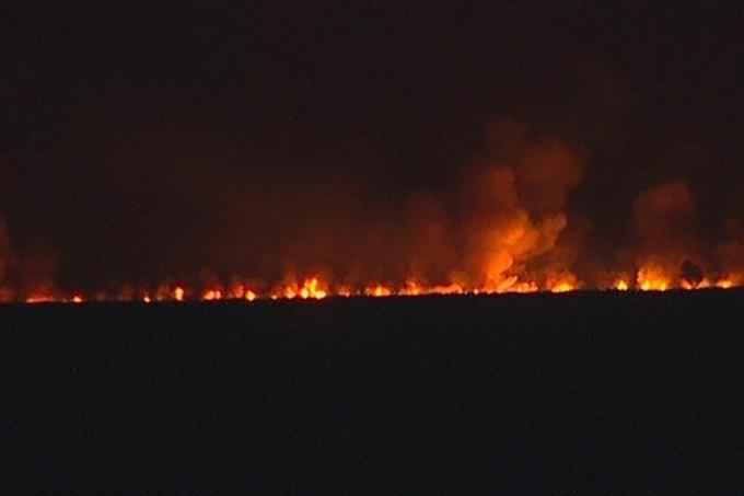 """Para Mario Secco, el incendio en la Reserva Natural  de Punta Lara fue """"intencional"""""""