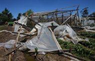 """""""Qué Nación, Provincia y Municipio actúen rápidamente para paliar los daños que nos dejan al borde de la ruina"""", dicen pequeños productores de La Plata"""