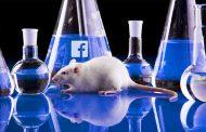 """Facebook, algo así como el """"Estado fascista 2.0"""" que todo lo controla"""