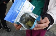 Uruguay pionero: arrancó la venta de marihuana en farmacias