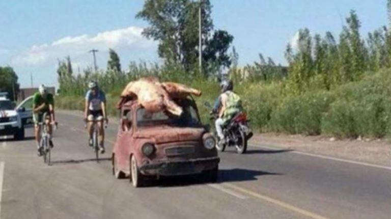 Las vaquitas siempre son ajenas, pero esta vez, en San Juan, las capturaron para morfar
