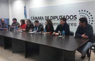 Diputados: previo a la votación de tarifas, la oposición se mostró unida frente a la crisis del sector porcino