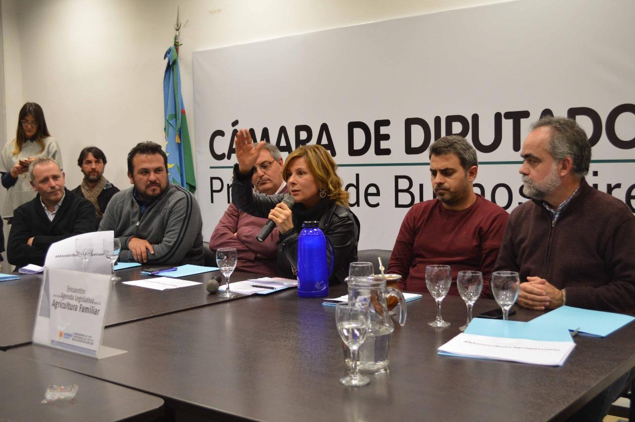 """Florencia Saintout: """"Se multiplican día a día las dificultades para la agricultura familiar"""""""