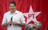 """Haddad interpela a """"la política"""" brasileña para cortarle el paso al fascismo que encarna Bolsonaro"""