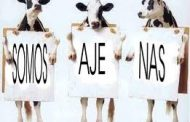 Lucha de clases a la parrilla: el consumo local de carne cayó a mínimos históricos mientras crecen las exportaciones