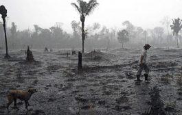 Los incendios en el Amazonas son la continuidad de una política inaugurada en la dictadura brasileña de los '60