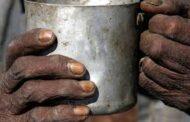 Que la alimentación esté mediada por el dinero es una de las causas del hambre como pandemia