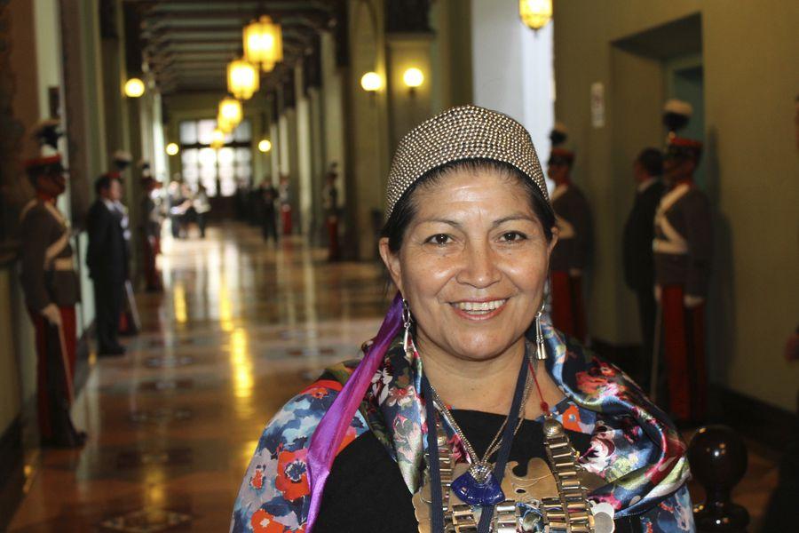 Cambia, algo cambia: Mujer, catedrática y mapuche, preside la Constituyente en Chile